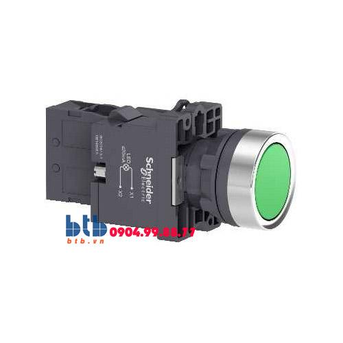 Schneider – Nút nhấn có đèn báo ø22 220V AC màu xanh lá